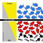 Blå fisk - røde fisk - sorte og døde fisk